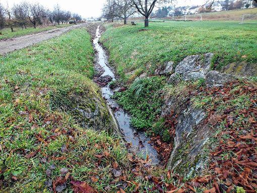 Der Riedmattenbach ist zwischenzeitlich komplett ausgebaggert.    Foto: Daniela Buch Foto: Weiler Zeitung